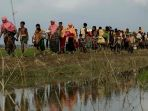 tribun-kalteng-pengungsi-rohingya_20170907_060433.jpg
