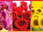 tribunkalteng-bunga-mawar-anggrek-matahari_20180121_162216.jpg