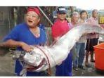 tribunkalteng-oarfish-ikan-pertanda-gempa-bumi-dna-tsunami.jpg