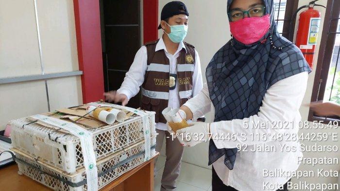 Polsek Semayang Balikpapan dan BKPB Gagalkan Penyelundupan 16 Ekor Burung Hias Menuju Kota Surabaya