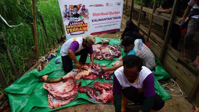 Pelaksanaan pemotongan hewan kurban tim ACT Kaltim yang menghadirkan hewan kurban berupa sapi dan didistribusikan kepada hampir 100 warga wilayah Lempake, Samarinda Utara