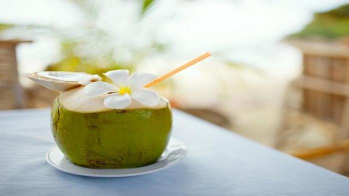 9 Manfaat Minum Air Kelapa di Pagi Hari, Mulai Melancarkan Pencernaan Hingga Menambah Kecantikan