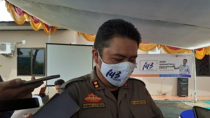 Pejabat Karantina Pertanian Tarakan Sebut Nilai Komoditas dari Daerah Perbatasan Tembus Rp 18,6 M