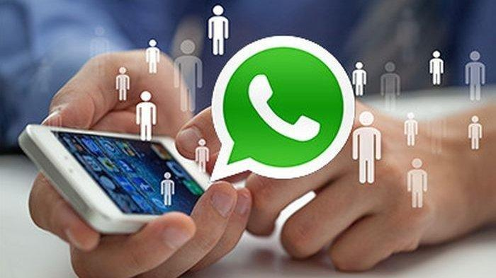 Atasi Kangen Tak Bisa Bertemu, Lewat WhatsApp Bisa Video Call 8 Orang Sekaligus, Begini Caranya
