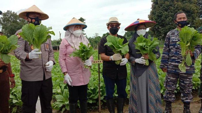 Kampung Tangguh di Desa Persiapan, Mutiara Pinang Sangatta Selatan Mandiri Hadapi Pandemi Covid-19