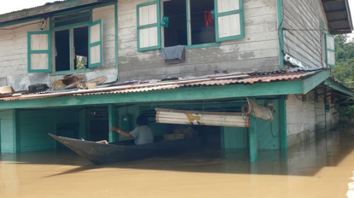 Banjir 7 Meter Sentuh Atap Rumah Warga Peso