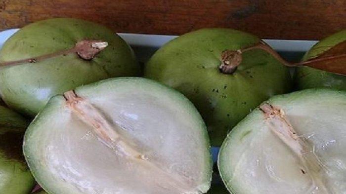 Sudah Jarang Ditemui Ternyata Buah Sawo Durian Miliki Banyak Manfaat untuk Kesehatan