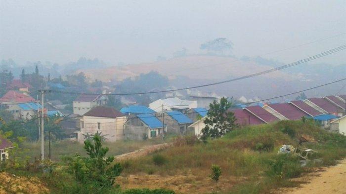 Dikepung Kabut Asap Karhutla 4 Bupati Ini Dilarang Keluar Daerah, Wajib Serius Tangani Kebakaran