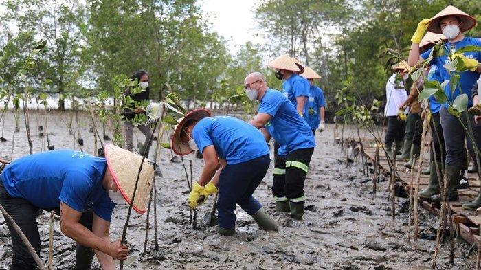 Bupati Paser Fahmi Fadli, Wakil Direktur Utama & CEO Group Indika Energy sekaligus Komisaris Utama Kideco Azis Armand, dan Presiden Direktur Kideco M Kurnia Ariawan melakukan penanaman mangrove.
