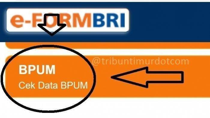 KABAR GEMBIRA BPUM Tahap 3 Cair, Cek Penerima BLT UMKM 2021 di eform.bri.co.id/bpum/banpresbpum.id