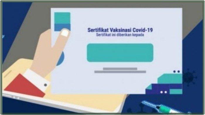 Cara Download Sertifikat Vaksin di PeduliLindungi bisa Lewat HP atau Laptop