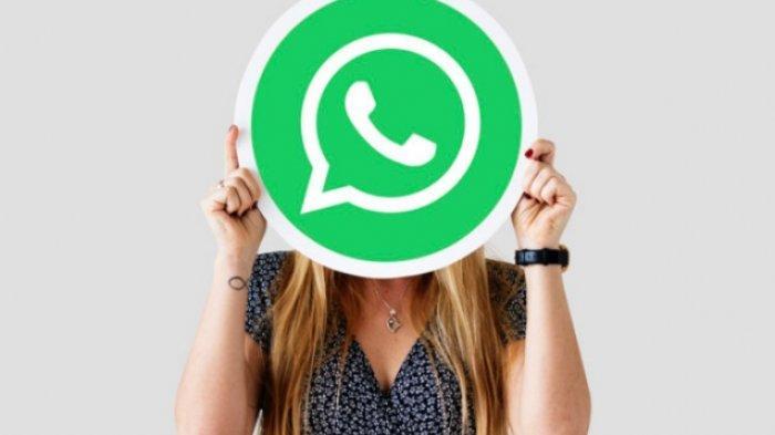 Cek Nomor WA yang Paling Sering Dihubungi Pasangan dan Cara Sadap WhatsApp Terbaru, Gratis!