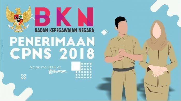 BKN Rilis Pengumuman Kelulusan Hasil Akhir Tes CPNS 2018, Berikut Daftar Instansinya