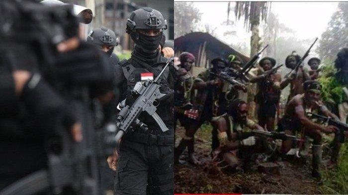 Bentrok Satgas Nemangkawi vs KKB Papua Makan Korban, Kepala Kampung dan Keluarganya Tewas Tertembak