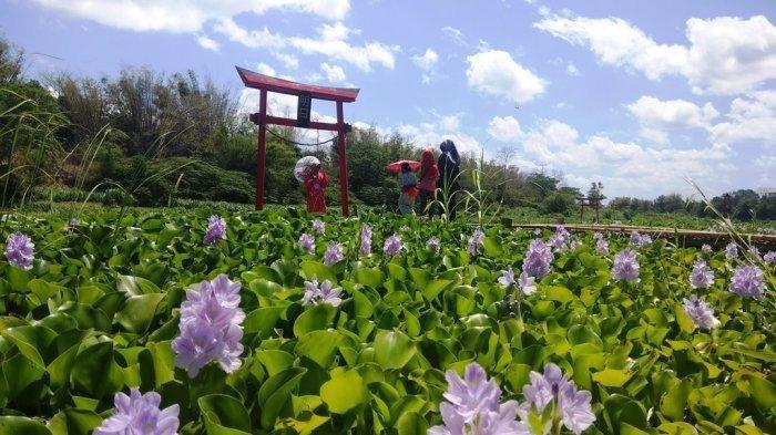 Jadi Destinasi Wisata Selfie ala Jepang di Bantul, Ini Harga Tiket Masuk Kalinampu Natural Park