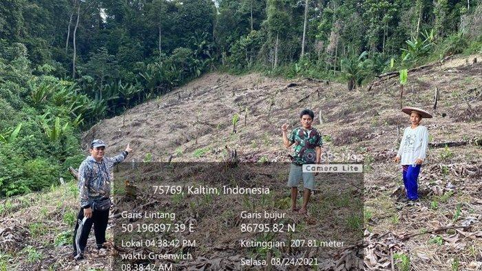 DKPP Mahulu Mulai Pendataan Petani, Pemkab Alokasikan Rp 6 M Lebih Memotivasi Warga Menanam Padi