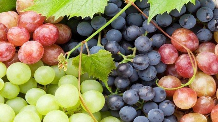 Hobi Makan Buah, Manfaat Buah Anggur Bagi Kesehatan Tubuh, Melindungi Tubuh Terhadap Bakteri & Virus