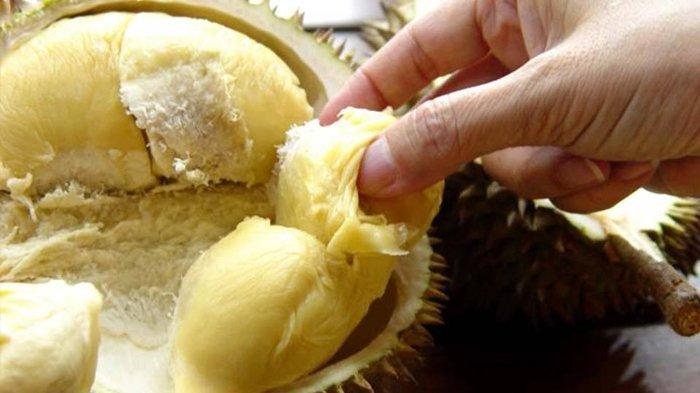 Lagi Musim Durian, Ini Makanan dan Minuman yang Tidak Boleh Dikonsumsi Bersamaan dengan Durian