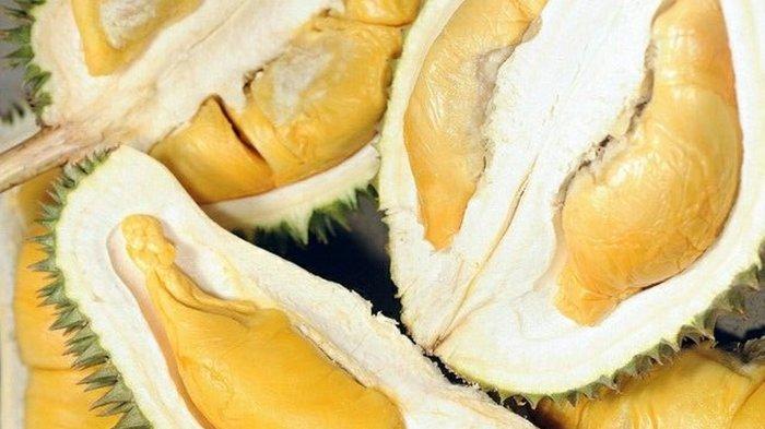 Wajib Tahu! 3 Pengidap Penyakit Ini Dilarang Makan Durian