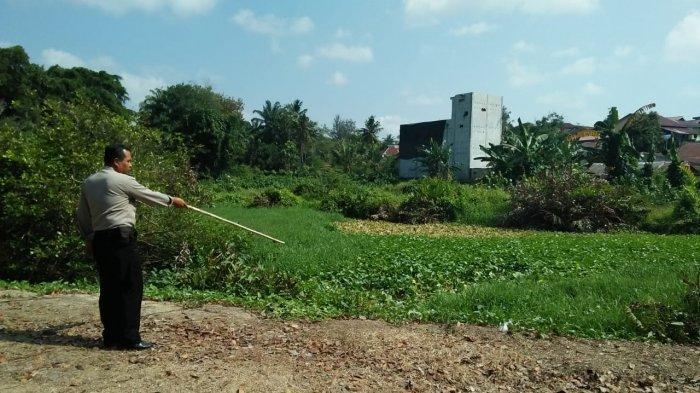Wanita Paruh Baya Ini Diserang Buaya di Kolam Area LNG Badak, Jempol Tangan Putus Paha Dicabik