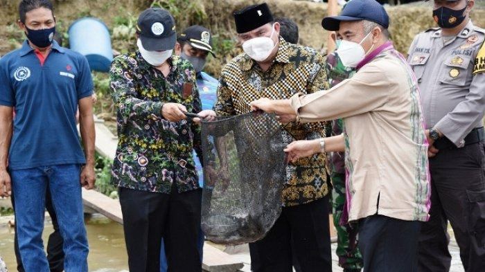Bupati dan Wabup Panen Raya Ikan, Bersamaan Peresmian PKTD dan Penyerahan BLT di Muara Pahu