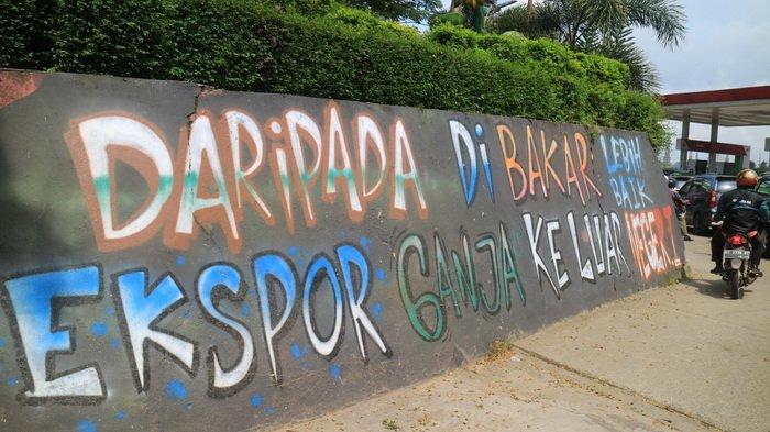 Disinggung Legalisasi Ganja di Indonesia, Ini Jawaban BNN Samarinda