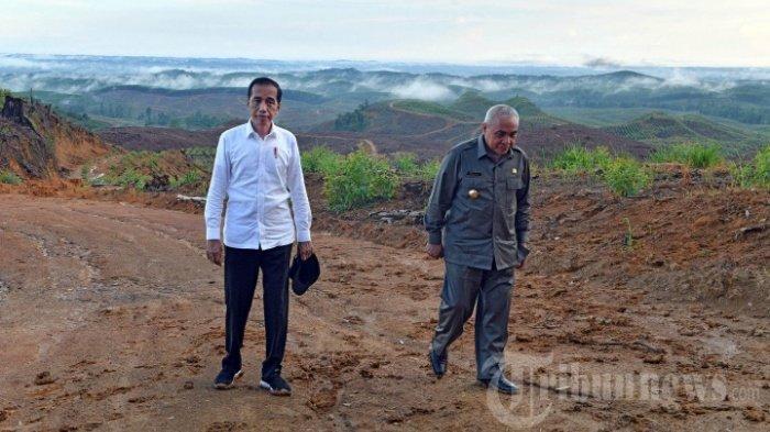 Gubernur Isran Noor Stop Proyek IKN Jika Rusak Hutan, Luas Ibu Kota Baru Vs Perkebunan Sawit Kaltim