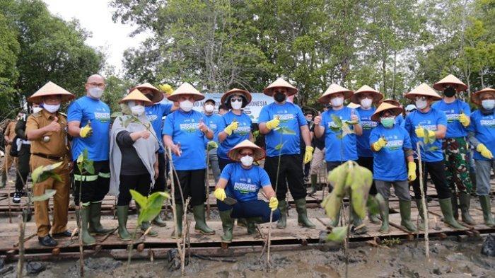 Dalam Rangkaian Ulang Tahun ke-21 Indika Energy, Kideco Tanam Ribuan Pohon Mangrove