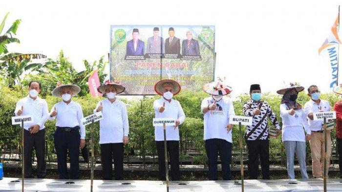 Usai Panen Cabai, Gubernur Isran Noor Beri Bantuan Bibit dan Alat Pertanian kepada Petani di Kubar