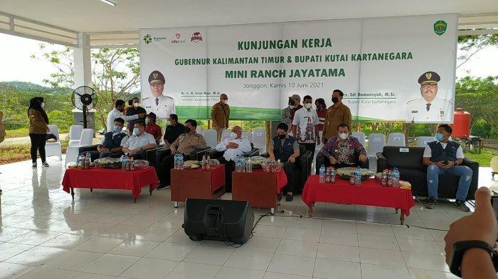 Gubernur Kaltim Isran Noor Kunjungi Mini Ranch Jayatama Desa Jonggon, Mulai Sasar Pertanian Jagung