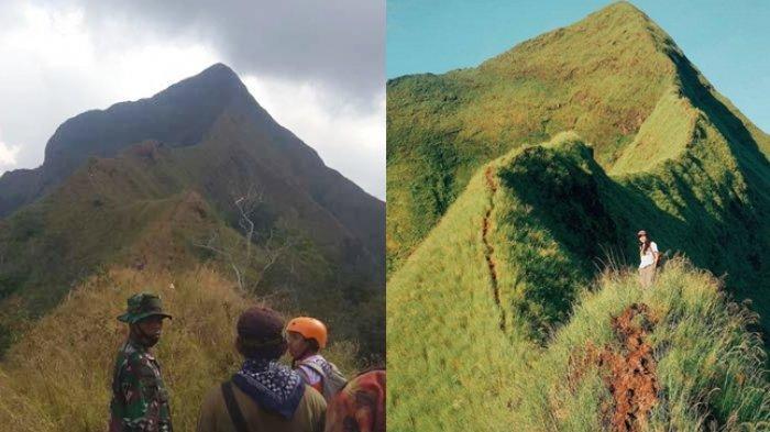 Gunung Piramid Bondowoso Kembali Makan Korban, Berikut Fakta dan Ekstremnya Jalur Pendakian