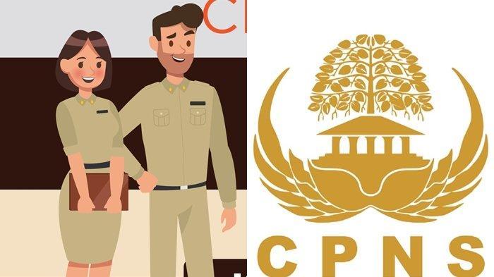 Hasil SKD CPNS 2019 Diumumkan Sekarang, Jangan Kecewa Bila Gagal, Masih Ada Peluang Besar dI 2020
