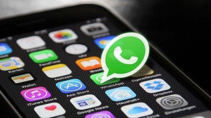Agar Tampilan Aplikasi WhatsApp Lebih Menarik, Ini Cara Mudah Ubah Tema WhatsApp