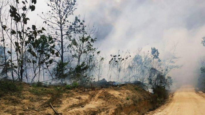 Presiden Joko Widodo Datangi Kalimantan Serahkan Hutan Adat Disambut Kabut Asap tak Sehat