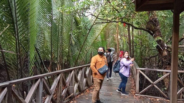 Menikmati Suasana Alam yang Tenang & Damai di Hutan Mangrove Ardi Mulyo Tanjung Palas Bulungan