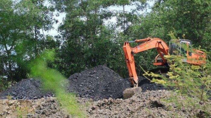 ESDM tak Tahu Data Batu Bara Keluar, Terkendala 2 Hal Ini,Tambang Bukan Solusi Kalimantan Timur
