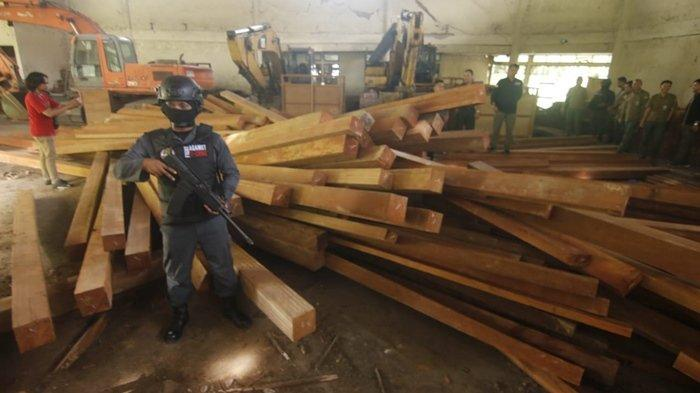 KLHK Kaltim Bongkar Pencurian Kayu Meranti dan Ulin Senilai Rp 6 Miliar di Kukar dan Samarinda