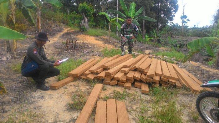 TNI di Perbatasan RI-Malaysia Dapatkan Kayu Olahan Illegal Tak Bertuan