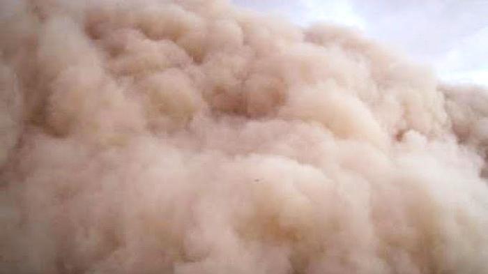 10 Menit Mencekam, 42 Calon Haji Asal Kalimantan Diterjang Badai Pasir Dahsyat Saat Berada Dalam Bus