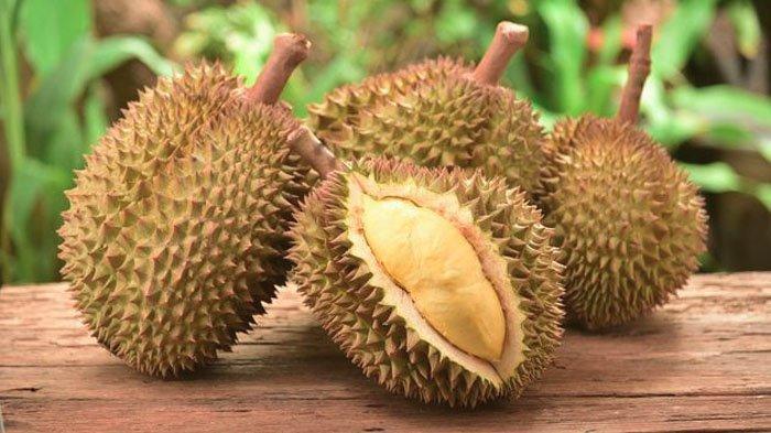 Lagi Musim Durian Nih, Sebelum Makan Buah Enak Ini, Ketahui Dulu Manfaat dan Efek Sampingnya