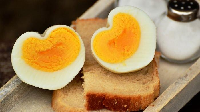Rutin Konsumsi Telur, bisa Menguatkan Otot dan Menyehatkan Mata