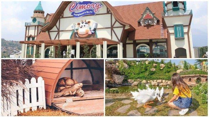 Berencana Akhir Pekan Ingin ke Cimory Dairyland Prigen, Berikut Wahana Seru dan Harga Tiket Masuknya