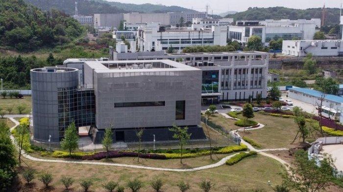 Bukan dari Pasar Wuhan atau Laboratorium Virologi, dari Mana Virus Corona Berasal? Temuan Baru WHO