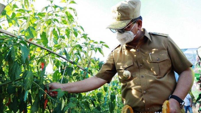 Sambangi Desa Salimbatu dan SP-7, Gubernur Irianto Serahkan Bantuan KUBE