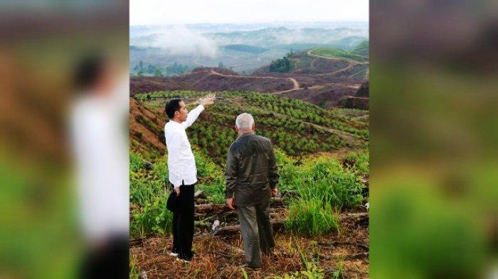 Gubernur Kaltim Isran Noor saat mendampingi Presiden Joko Widodo melihat lokasi calon ibu kota negara baru Indonesia di Kabupaten Penajam Paser Utara (PPU).