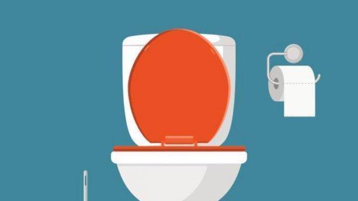 Jangan Panik Saat WC Anda Mampet, Ini Cara Menangani WC Mampet Agar Bisa Kembali Lancar
