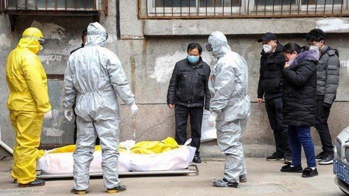 Jumlah Kematian Pasien Corona Menurun, Ilmuwan Peraih Nobel Prediksi Covid-19 Berakhir Lebih Cepat