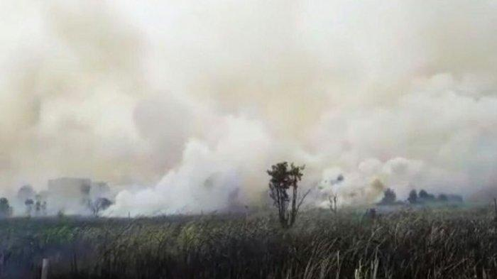 VIDEO Atmosfir Kalimantan Selatan Diselimuti Kabut Asap Pekat Bak Senja di Siang Hari Bolong