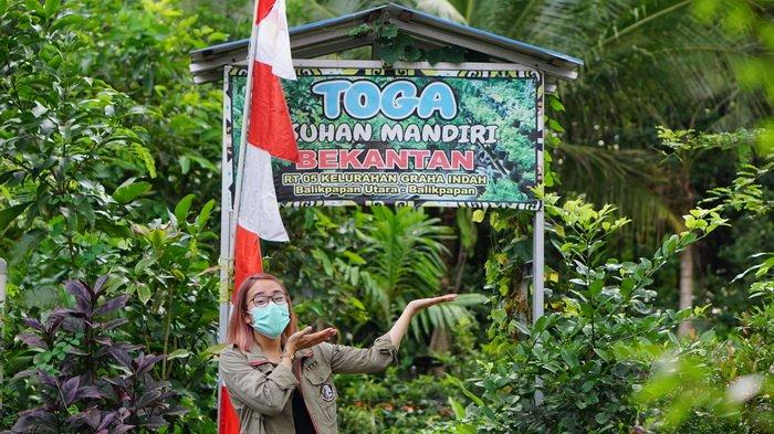 Selain Lihat Aksi Lucu Bekantan, di Kampung Wisata Bekantan Juga Terdapat Taman Toga Asuhan Mandiri
