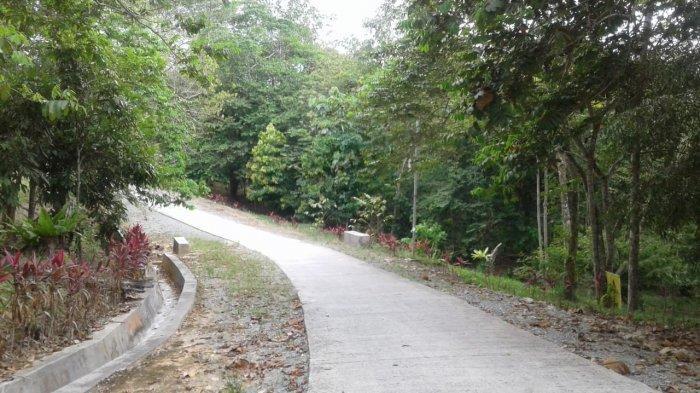Harga Tiket Masuk Kebun Raya Balikpapan Berapa? Sudah Sodorkan ke DPRD dan Walikota Rizal Effendi